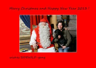 Christmas_2012_web