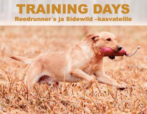 trainingdays2013